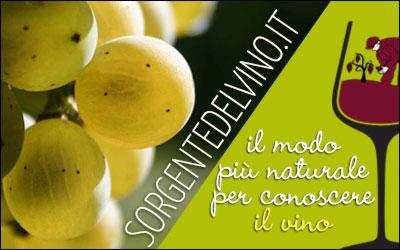 sorgentedelvino.it vendita  diretta vini naturali italiani